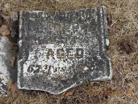 DEPUE, DOLLEY - Branch County, Michigan | DOLLEY DEPUE - Michigan Gravestone Photos
