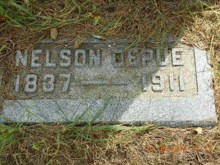 DEPUE, NELSON - Branch County, Michigan | NELSON DEPUE - Michigan Gravestone Photos
