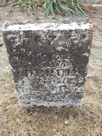 DEPUE, UNKNOWN - Branch County, Michigan   UNKNOWN DEPUE - Michigan Gravestone Photos