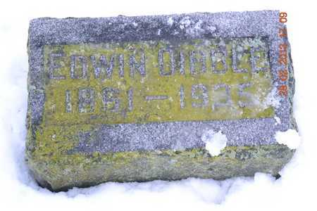 DIBBLE, EDWIN - Branch County, Michigan | EDWIN DIBBLE - Michigan Gravestone Photos
