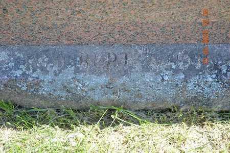 DOBSON, BERT(CLOSEUP) - Branch County, Michigan   BERT(CLOSEUP) DOBSON - Michigan Gravestone Photos