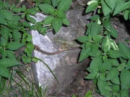 DOBSON, PHILO E. - Branch County, Michigan | PHILO E. DOBSON - Michigan Gravestone Photos