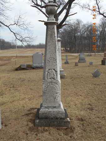 DRIGGS, JEHIEL - Branch County, Michigan | JEHIEL DRIGGS - Michigan Gravestone Photos