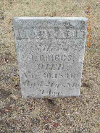 DRIGGS, MARY ANN - Branch County, Michigan | MARY ANN DRIGGS - Michigan Gravestone Photos