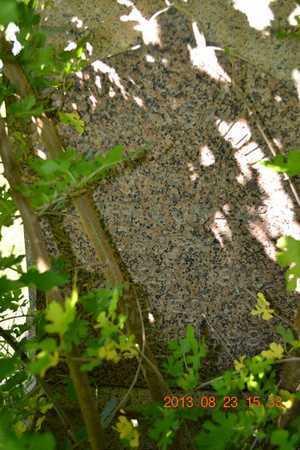 DUNLAP(CLOSEUP), MARY - Branch County, Michigan | MARY DUNLAP(CLOSEUP) - Michigan Gravestone Photos