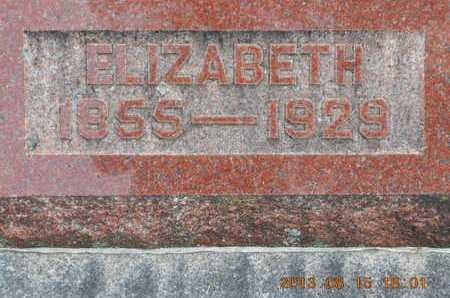 DUNN, ELIZABETH - Branch County, Michigan | ELIZABETH DUNN - Michigan Gravestone Photos