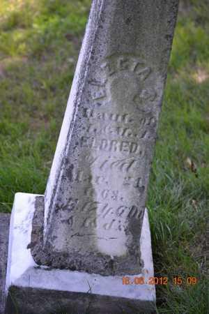ELDRED, ELECTA S. - Branch County, Michigan | ELECTA S. ELDRED - Michigan Gravestone Photos