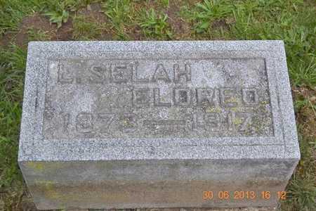 ELDRED, L. SELAH - Branch County, Michigan   L. SELAH ELDRED - Michigan Gravestone Photos