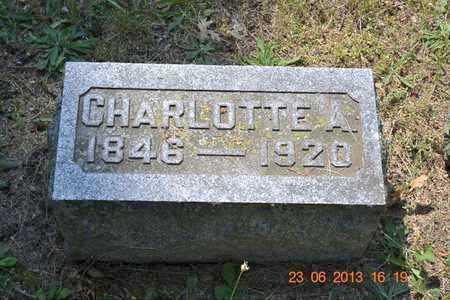FAIRBANKS, CHARLOTTE A. - Branch County, Michigan | CHARLOTTE A. FAIRBANKS - Michigan Gravestone Photos