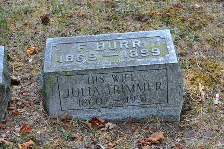 FAIRBANKS, JULIA - Branch County, Michigan | JULIA FAIRBANKS - Michigan Gravestone Photos