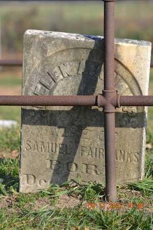 KNAPP FAIRBANKS, HELEN A. - Branch County, Michigan | HELEN A. KNAPP FAIRBANKS - Michigan Gravestone Photos