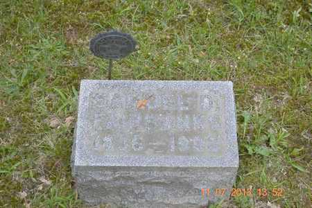 FAIRBANKS, SAMUEL D. - Branch County, Michigan | SAMUEL D. FAIRBANKS - Michigan Gravestone Photos