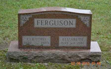 FERGUSON, CLIFFORD - Branch County, Michigan | CLIFFORD FERGUSON - Michigan Gravestone Photos