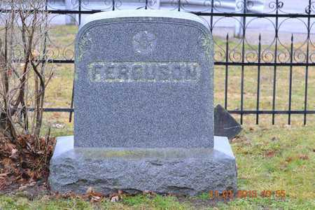 FERGUSON, FAMILY - Branch County, Michigan | FAMILY FERGUSON - Michigan Gravestone Photos