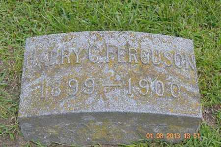 FERGUSON, HARRY C. - Branch County, Michigan | HARRY C. FERGUSON - Michigan Gravestone Photos