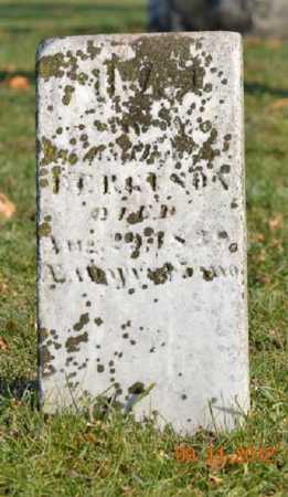 FERGUSON, IRA - Branch County, Michigan | IRA FERGUSON - Michigan Gravestone Photos