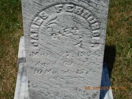 FERGUSON, JAMES - Branch County, Michigan | JAMES FERGUSON - Michigan Gravestone Photos