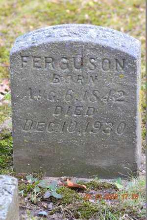 FERGUSON, RACHEL - Branch County, Michigan | RACHEL FERGUSON - Michigan Gravestone Photos