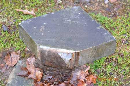 FERGUSON, VERA - Branch County, Michigan | VERA FERGUSON - Michigan Gravestone Photos