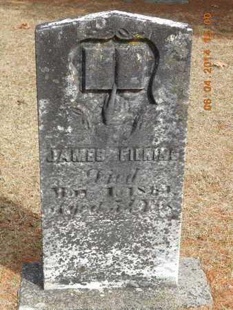 FILKINS, JAMES - Branch County, Michigan | JAMES FILKINS - Michigan Gravestone Photos