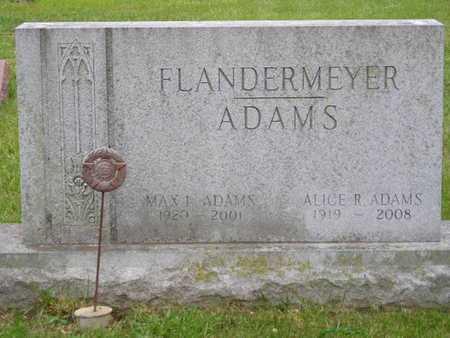 ADAMS, FAMILY - Branch County, Michigan | FAMILY ADAMS - Michigan Gravestone Photos