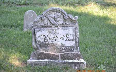 FRENCH, CLARA - Branch County, Michigan | CLARA FRENCH - Michigan Gravestone Photos