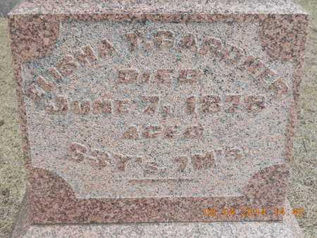 GARDNER, ELISHA T. - Branch County, Michigan | ELISHA T. GARDNER - Michigan Gravestone Photos