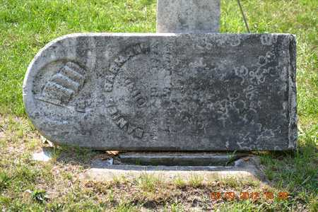 GARMAN, DANIEL - Branch County, Michigan | DANIEL GARMAN - Michigan Gravestone Photos