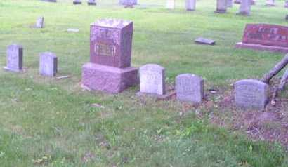 GEER, LOT OVERVIEW - Branch County, Michigan | LOT OVERVIEW GEER - Michigan Gravestone Photos