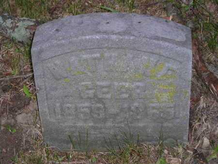 GEER, NATHAN F. - Branch County, Michigan | NATHAN F. GEER - Michigan Gravestone Photos