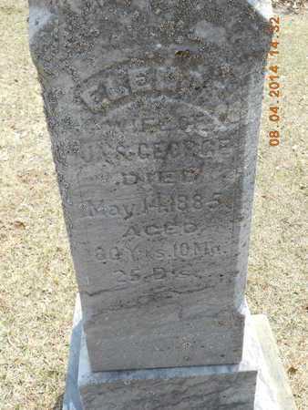 GEORGE, ELENOR - Branch County, Michigan | ELENOR GEORGE - Michigan Gravestone Photos