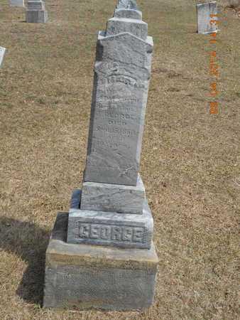 GEORGE, FAMILY - Branch County, Michigan | FAMILY GEORGE - Michigan Gravestone Photos