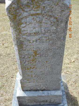 GEORGE, JAMES - Branch County, Michigan | JAMES GEORGE - Michigan Gravestone Photos