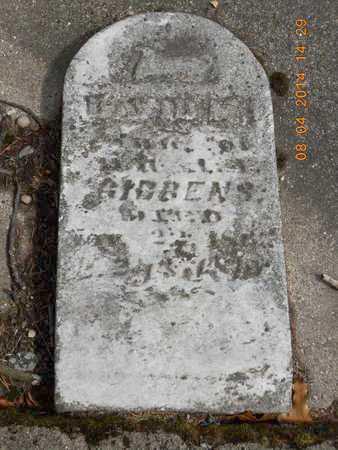 GIBBENS, DAVID M. - Branch County, Michigan   DAVID M. GIBBENS - Michigan Gravestone Photos