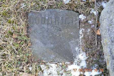GOODRICH, IRENE M. - Branch County, Michigan | IRENE M. GOODRICH - Michigan Gravestone Photos
