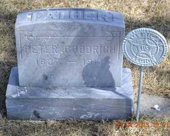 GOODRICH, PETER - Branch County, Michigan | PETER GOODRICH - Michigan Gravestone Photos