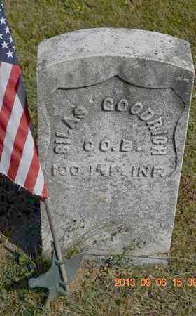 GOODRICH, SILAS - Branch County, Michigan | SILAS GOODRICH - Michigan Gravestone Photos