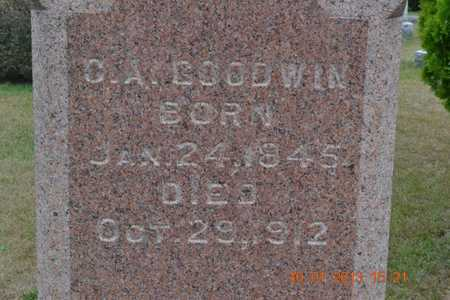 GOODWIN, CHARLES A. - Branch County, Michigan | CHARLES A. GOODWIN - Michigan Gravestone Photos
