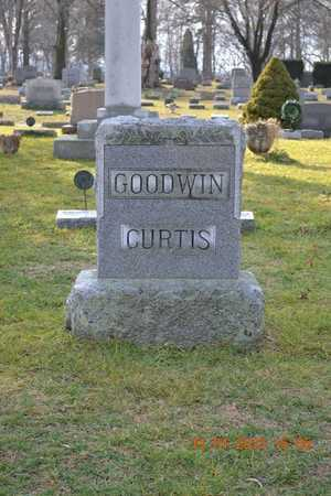 CURTIS, FAMILY - Branch County, Michigan | FAMILY CURTIS - Michigan Gravestone Photos