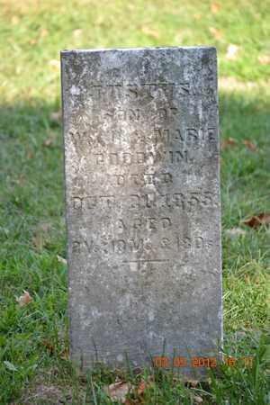 GOODWIN, JUSTUS - Branch County, Michigan | JUSTUS GOODWIN - Michigan Gravestone Photos