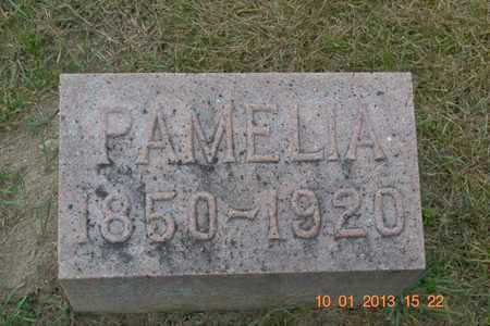 GARDNES GOODWIN, PAMELIA - Branch County, Michigan | PAMELIA GARDNES GOODWIN - Michigan Gravestone Photos