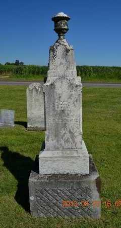 GREEN, ELIZABETH - Branch County, Michigan | ELIZABETH GREEN - Michigan Gravestone Photos
