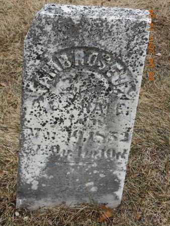 HALE, JR., AMBROSE - Branch County, Michigan | AMBROSE HALE, JR. - Michigan Gravestone Photos