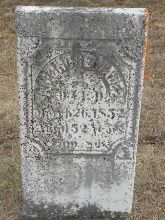 HALE, SR., AMBROSE - Branch County, Michigan | AMBROSE HALE, SR. - Michigan Gravestone Photos