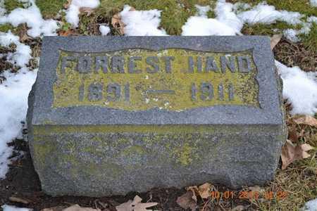 HAND, FORREST - Branch County, Michigan | FORREST HAND - Michigan Gravestone Photos