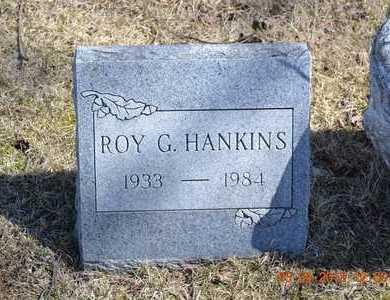 HANKINS, ROY G. - Branch County, Michigan | ROY G. HANKINS - Michigan Gravestone Photos