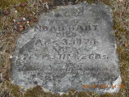 HART, MARY - Branch County, Michigan | MARY HART - Michigan Gravestone Photos