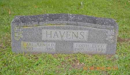 HAVENS, EARL ARNOLD - Branch County, Michigan | EARL ARNOLD HAVENS - Michigan Gravestone Photos
