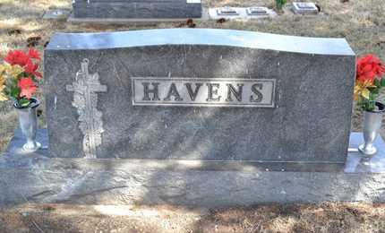 HAVENS, LOT MARKER - Branch County, Michigan | LOT MARKER HAVENS - Michigan Gravestone Photos