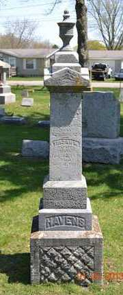 HAVENS, NATHANIEL - Branch County, Michigan | NATHANIEL HAVENS - Michigan Gravestone Photos